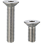 Flat Head Cap Screws/Stainless Steel (Box)