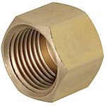 Brass Fittings for Steel Pipe/Caps