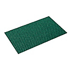 Disinfection Mat (with Lining)