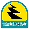 Electrical Safety Signs Sticker for Helmet