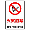 Prohibition Sign Flammable